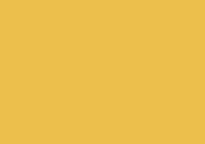Горчица (поплин 2.20)