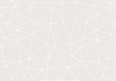 Сияние (Поплин 2.20)